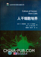 人干细胞培养