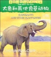 大象和其他食草动物