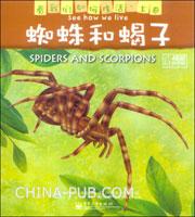 蜘蛛和蝎子