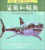 鲨鱼和鳐鱼