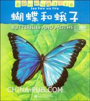蝴蝶和蛾子