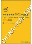 全球创业观察2002中国报告