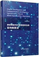 群体智能与计算智能优化的盲均衡算法