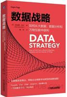 (特价书)数据战略:如何从大数据、数据分析和万物互联中获利