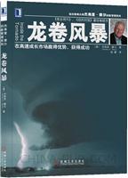 龙卷风暴:在高速成长市场赢得优势,获得成功[图书]
