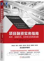 项目融资实务指南:政府、金融机构、投资者全视角路线图