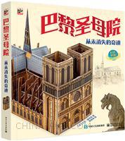 巴黎圣母院 从未消失的奇迹