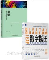 [套装书]数字跃迁:数字化变革的战略与战术+重塑:数字化转型范式(2册)