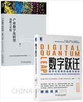 [套装书]数字跃迁:数字化变革的战略与战术+产业数字化转型:战略与实践(2册)