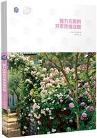 魅力无限的月季玫瑰花园