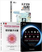 [套装书]人人可懂的量子计算+初识量子计算+天才引导的历程:数学中的伟大定理(3册)