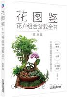 花图鉴:花卉组合盆栽全书(提高篇)