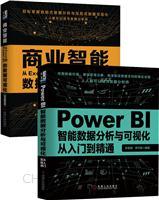 [套装书]Power BI智能数据分析与可视化从入门到精通+商业智能:从Excel到Power BI的数据可视化(动态图表篇)(2册)