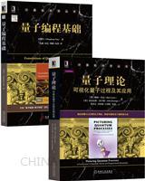 [套装书]量子理论:可视化量子过程及其应用+量子编程基础(2册)