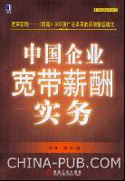 中国企业宽带薪酬实务[图书]