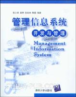 管理信息系统:开发与管理