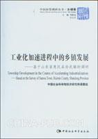 工业化加速进程中的乡镇发展:基于山东省惠民县孙武镇的调研