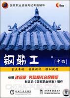 钢筋工(中级)(3VCD)