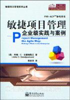 敏捷项目管理:企业级实践与案例
