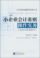 小企业会计准则操作实务(从2013年起执行)